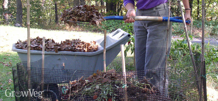 Compost piles can provide a safe place for creatures in the winter