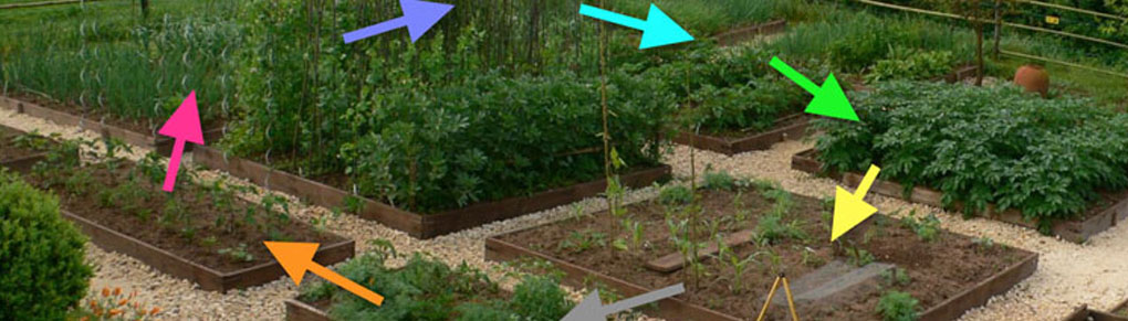 Easy Crop Rotation Using the Colors of the Rainbow