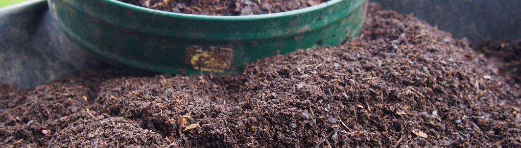 How to Make Leafmold - Gardener's Gold