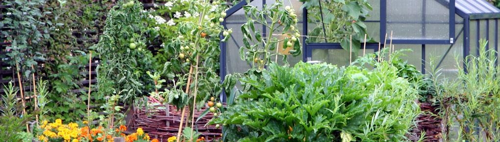 Vegetable Garden Planner | Garden Planning Apps | GrowVeg.com