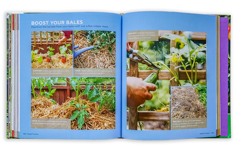Full of step-by-step projects that make gardening easy
